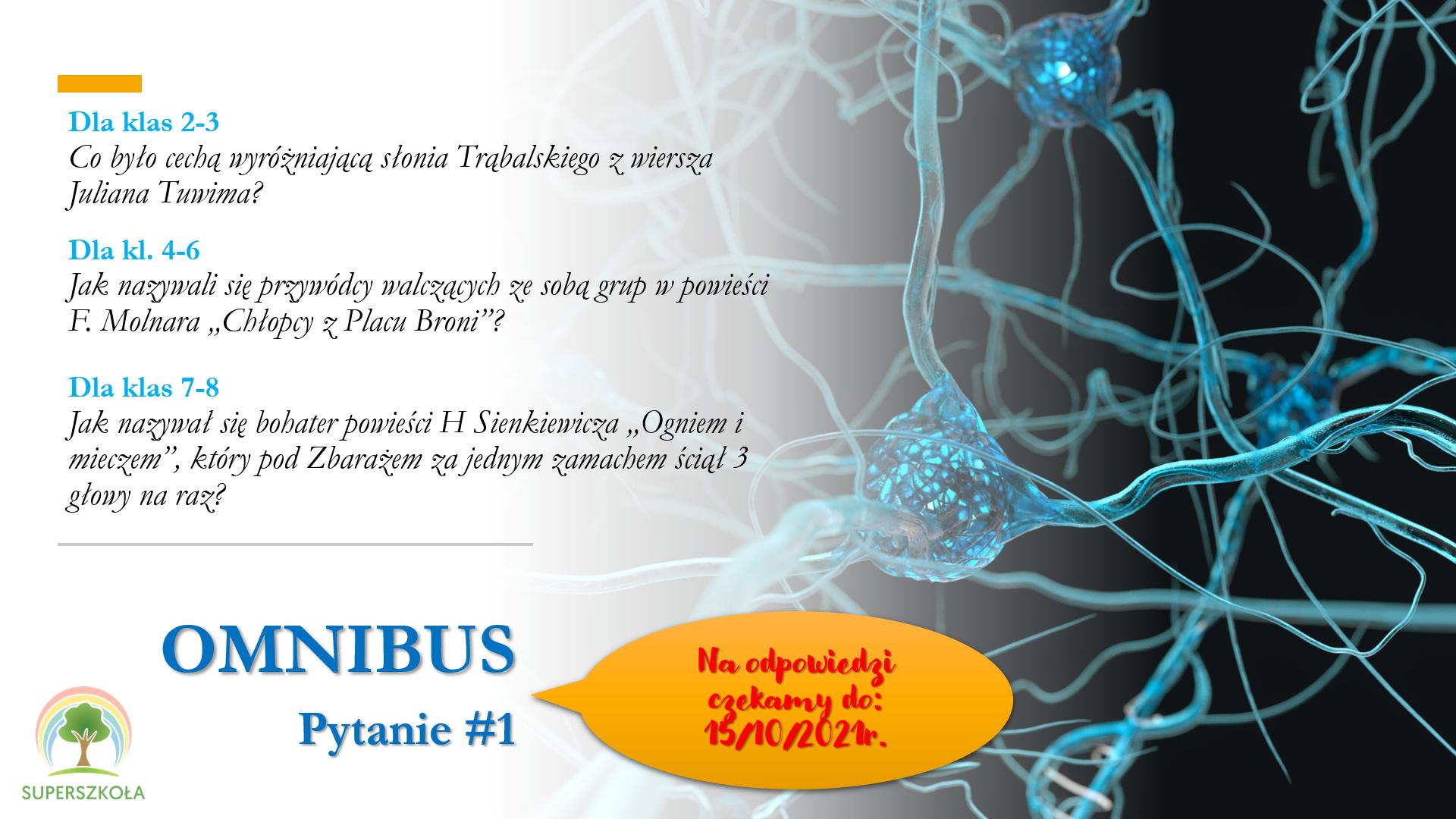 Omnibus_2021_pyt_1