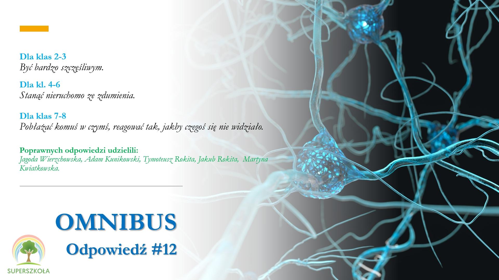 omnibus_odp_12