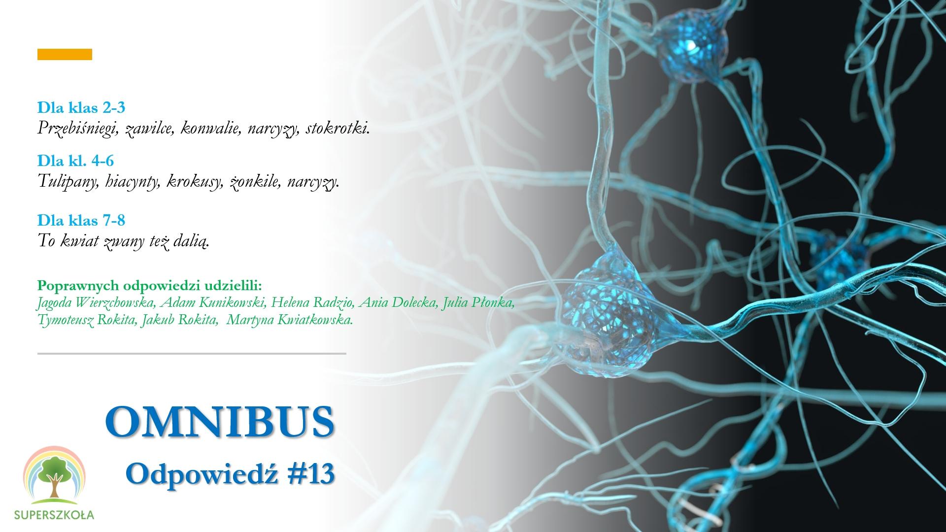omnibus_odp_13