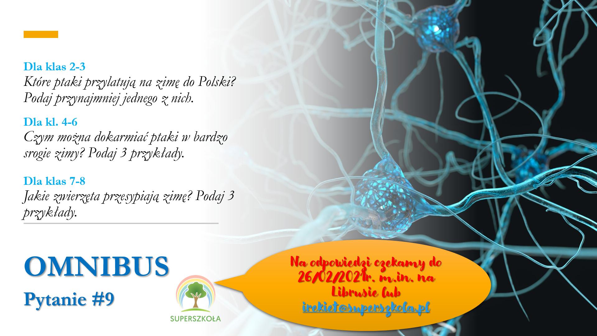 omnibus_pyt_9
