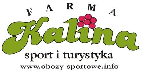 kalina_logo