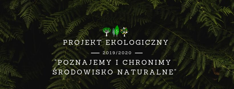 projekt_ekologiczny_feature2