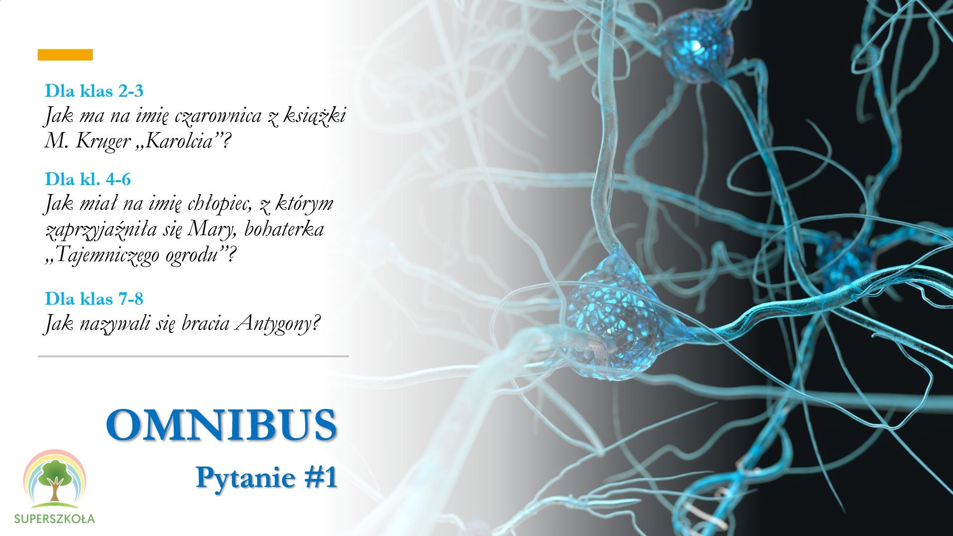 Omnibus_pyt_1