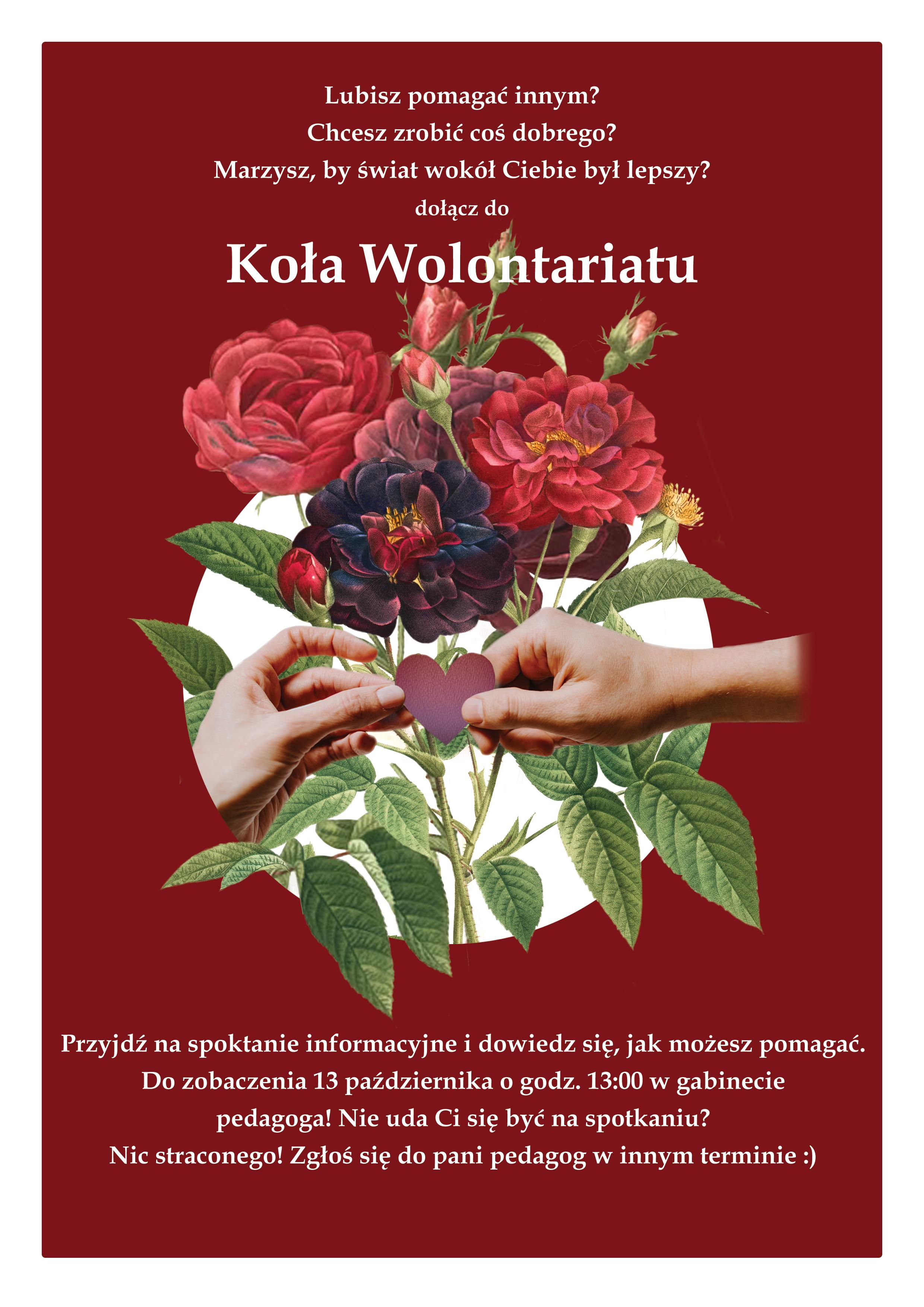 kolo_wolontariatu